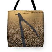 Dancing Fool Tote Bag by Mike McGlothlen