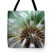 Dandelion Tears Tote Bag by Paul Ward