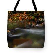 Dark Water Autumn Tote Bag by Mike  Dawson