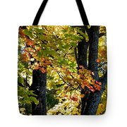 Dazzling Days Of Autumn Tote Bag by Will Borden