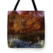 Deciduous Woods, In Autumn With Frost Tote Bag by The Irish Image Collection