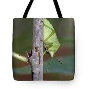 Descent Of A Green Stink Bug Tote Bag by Doris Potter
