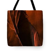 Desert Beam Tote Bag by Mike  Dawson