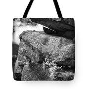 Devil's Den - 34 Tote Bag by Paul W Faust -  Impressions of Light