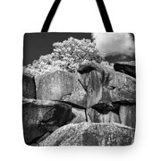 Devil's Den - 39 Tote Bag by Paul W Faust -  Impressions of Light
