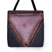 Diatom - Triceratium Formosum Tote Bag by Eric V. Grave