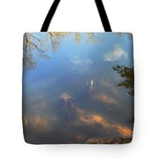 Different Worlds Tote Bag by Karol Livote