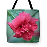 Double Hibiscus Tote Bag by Carol Groenen