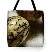 Dragon Eggs Tote Bag by Judi Bagwell