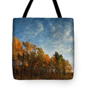 Dressed In Autumn Colors Tote Bag by Priska Wettstein