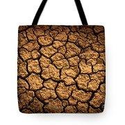 Dried Terrain Tote Bag by Carlos Caetano
