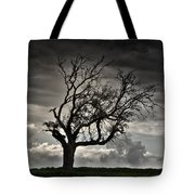 Dry Sunset Tote Bag by Stelios Kleanthous