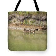 Ducks In A Row Tote Bag by Corinne Elizabeth Cowherd