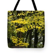 Dun Na Ri Forest Park, County Cavan Tote Bag by Peter McCabe