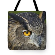 Eagle Owl 2 Tote Bag by Clare Bambers