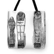 Egypt: Royal Mummies, 1882 Tote Bag by Granger