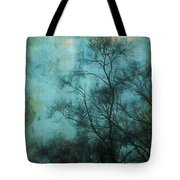 Evening Sky Tote Bag by Judi Bagwell