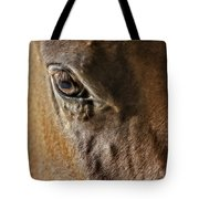 Eye Of The Horse Tote Bag by Susan Candelario