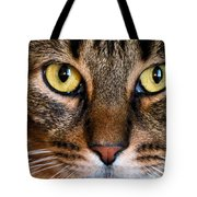 Face Framed Feline Tote Bag by Art Dingo