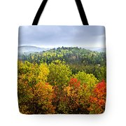 Fall Forest Tote Bag by Elena Elisseeva
