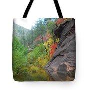 Fall Peeks From Behind The Rocks Tote Bag by Heather Kirk