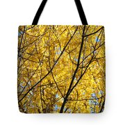 Fall Trees Art Prints Yellow Autumn Leaves Tote Bag by Baslee Troutman