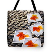 Fallen Autumn  Prints Tote Bag by Carlos Caetano