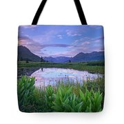 False Hellebore Surrounded Pond Tote Bag by Tim Fitzharris