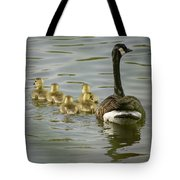 Family Swim Tote Bag by Heather Applegate