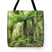 Fern Tree Tote Bag by MotHaiBaPhoto Prints