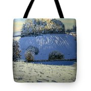 Field Of Shadows Tote Bag by Andrew Macara