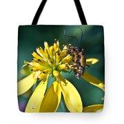 Firefly Fornication Tote Bag by Douglas Barnett