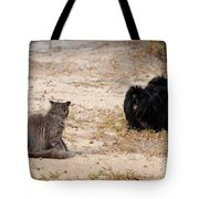 First Impressions Tote Bag by Al Powell Photography USA