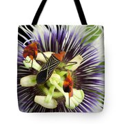 Flag-footed Bug Anisocelis Flavolineata Tote Bag by Christian Ziegler