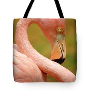 Flamingo Tote Bag by Carlos Caetano