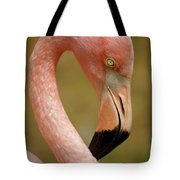 Flamingo Head Tote Bag by Carlos Caetano