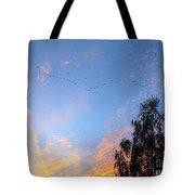 Flight Into The Sunset Tote Bag by Ausra Paulauskaite