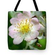 Floral Fireworks Tote Bag by Neal  Eslinger