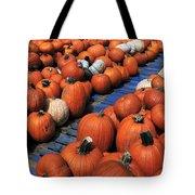 Florida Gator Pumpkins Tote Bag by David Lee Thompson
