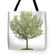 Flowering Apple Tree Tote Bag by Elena Elisseeva