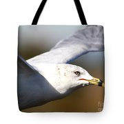 Flying Seagull Closeup Tote Bag by Wingsdomain Art and Photography