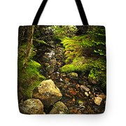 Forest Creek Tote Bag by Elena Elisseeva