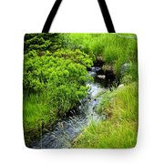 Forest Creek In Newfoundland Tote Bag by Elena Elisseeva