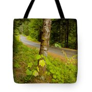 Forest Escape Tote Bag by Idaho Scenic Images Linda Lantzy