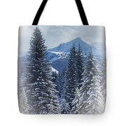 Forest In The Winter Tote Bag by Carson Ganci