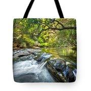 Forest Jewel Tote Bag by Debra and Dave Vanderlaan