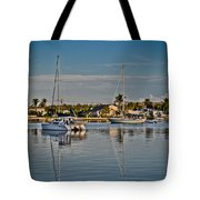 Fort Pierce Sweetness Tote Bag by Trish Tritz