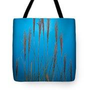 Fountain Grass In Blue Tote Bag by Steve Gadomski