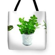 Fresh Herbs Tote Bag by Elena Elisseeva