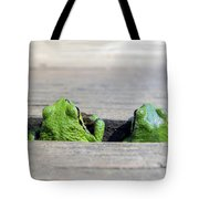 Friends Tote Bag by Derek Holzapfel